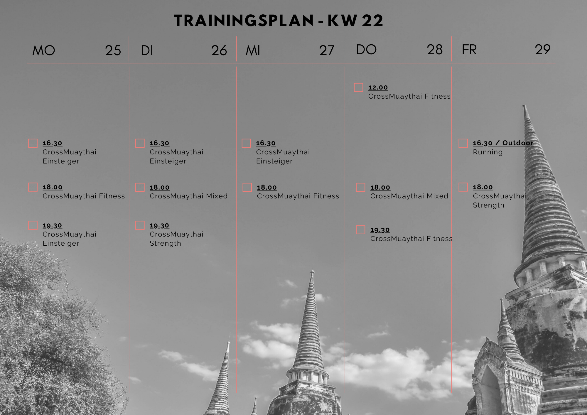 trainingsplan black dragon gym
